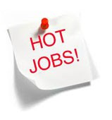 hot jobs in delhi jobs in delhi or noida or gurgaon or faridabad or ncr top jobs in corporate companies jobs in multinational companies mncs jobs in central delhi north delhi west delhi south delhi or east delhi or delhi/ncr india
